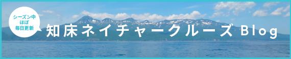 シーズン中ほぼ毎日更新! 知床ネイチャークルーズ ブログ