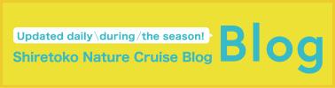 Updated daily during the season! Shiretoko Nature Cruise Blog