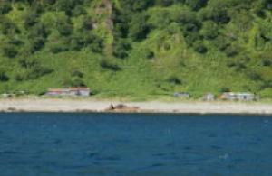 Akaiwa district seen from the sea